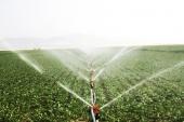 La Comisión Europea ayudará a innovar en la agricultura para responder a demanda alimentaria