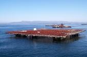 La Factoría de Innovación de A Coruña analiza las innovaciones tecnológicas que se están aplicando en el sector pesquero y en la industria conservera gallega
