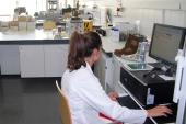 El Centro Tecnológico del Calzado de la Rioja consolida su potencial innovador con la puesta en marcha de nuevos proyectos de investigación