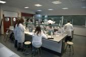Vigo, segunda universidad española en investigación, según la Fundación CYD