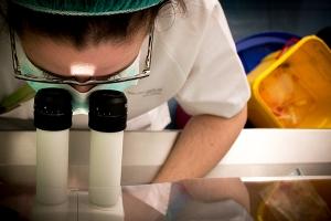 """Nace el Observatorio """"Mujeres, Ciencia e Innovación"""""""