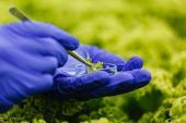 El gasto en I+D en biotecnología aumentó un 7,2 por ciento en 2017, según el INE
